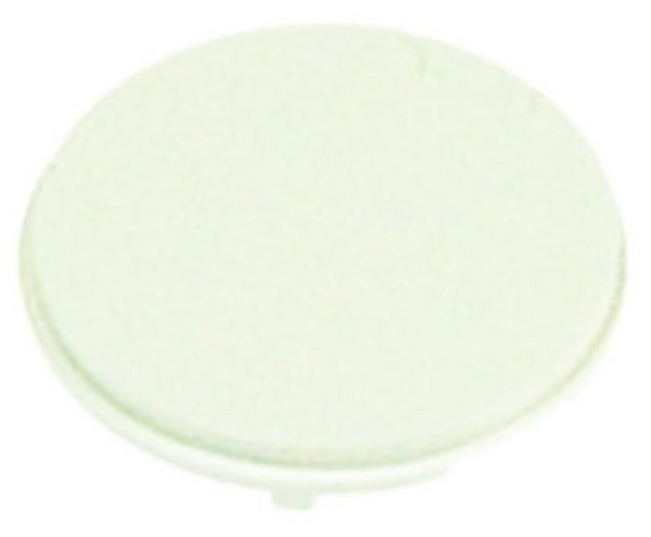 iPod nano (1st Gen) Click Wheel Button (White)